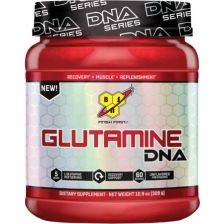 Glutamine DNA (300g)