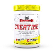 Mammoth creatine (1000g)