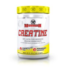 Mammoth Creatine (300g)