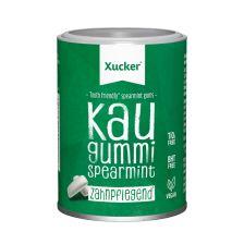 Xylit-Kaugummis (100g)