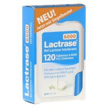 Lactrase 6.000 FCC Tabletten im Klickspender (120 Stück)