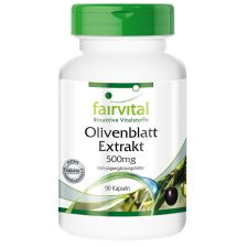 Olivenblatt Extrakt (90 Kapseln)