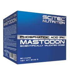 Mastodon (90 Caps)