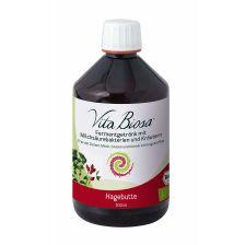 Vita Biosa Hagebutte bio (500ml)