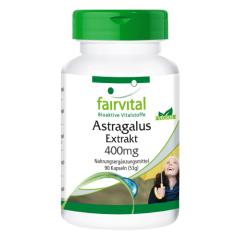 Astragalus Extrakt (90 Kapseln)