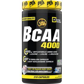 BCAA 4000 (210 Kapseln)