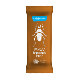 Raw Insect Bar (20x40g)