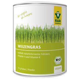 Bio Weizengras Pulver (75g)