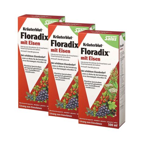3 x Floradix mit Eisen Tonikum rot (3x500ml)