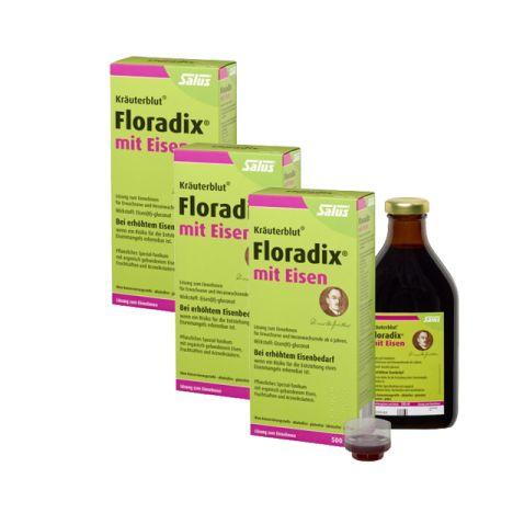 3 x Floradix mit Eisen Tonikum (3x500ml)