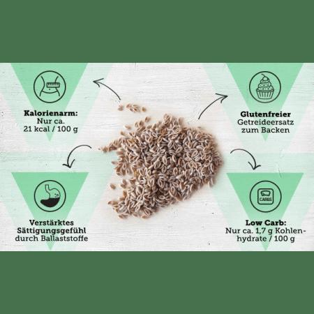 Bio Flohsamen (250g)
