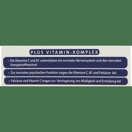 Ginkgo 100 mg (48 Kapseln)