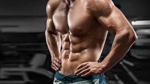 Muskelaufbau - eine wissenschaftliche Sicht!