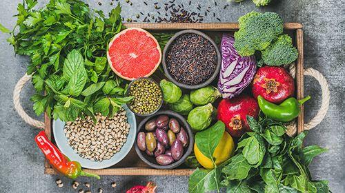Vegane Ernährung – des Tierwohls wegen!