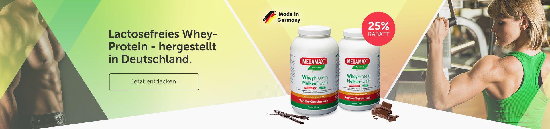 Megamax Whey Protein