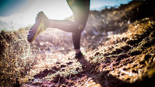 Fit durch den Herbst mit Trailrunning