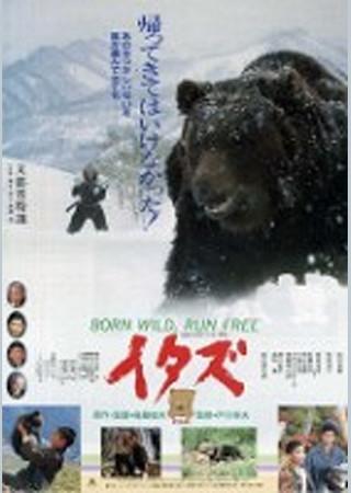 イタズ 熊