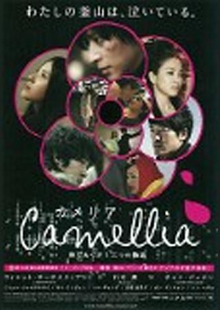 カメリア/Camellia