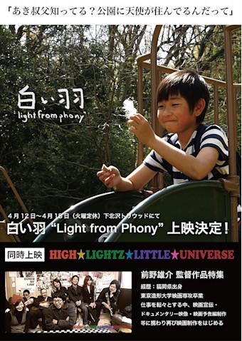白い羽 Light from Phony