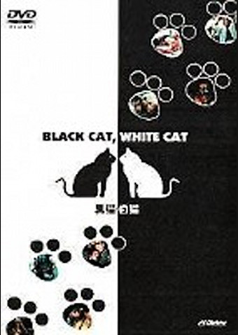 黒猫・白猫