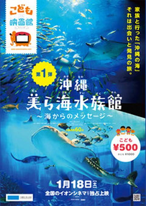 沖縄美ら海水族館 海からのメッセージ