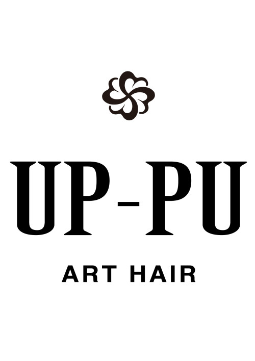 ART HAIR UP-PU