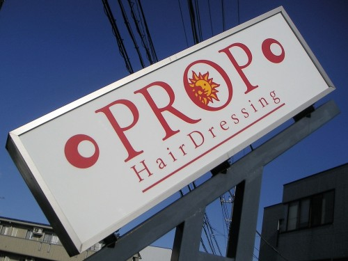 PROP HairDressing
