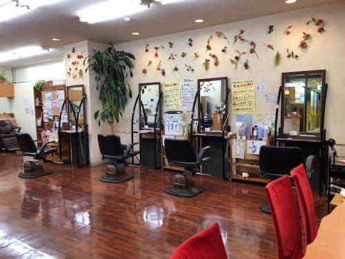 HAIR ESTHESALON AONO