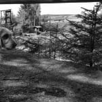 Arísek na střelnici