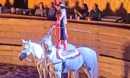 Standing on Horses at Dolly Parton's Stampede Dinner Show Pigeon Forge