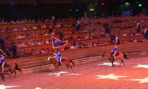 Horses Galloping at Dolly Parton's Stampede Dinner Show Pigeon Forge