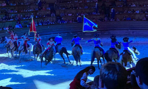 Line of Horses at Dolly Parton's Stampede Dinner Show Pigeon Forge