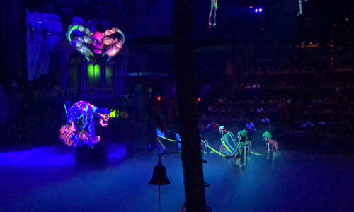Neon Performance at Pirates Voyage Dinner and Show Pigeon Forge