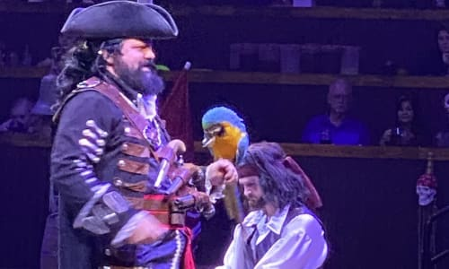 Captain at Pirates Voyage Dinner and Show Pigeon Forge