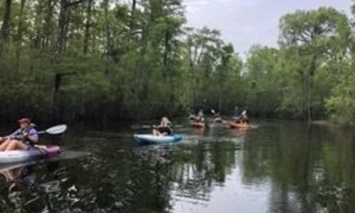 On the Water with Guided Murrells Inlet Backwater Myrtle Beach Kayak Tour