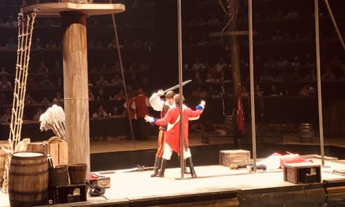Fighting at Pirates Voyage Dinner and Show Pigeon Forge