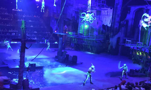 Neon Sword Fighting at Pirates Voyage Dinner and Show Pigeon Forge