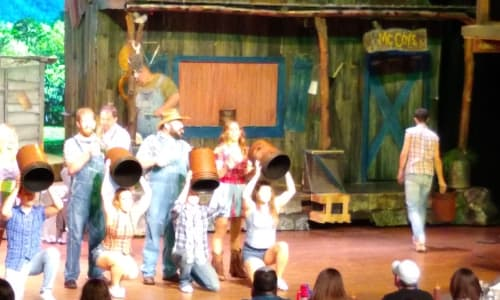 Fun on Stage with the Hatfield and McCoy Dinner Show