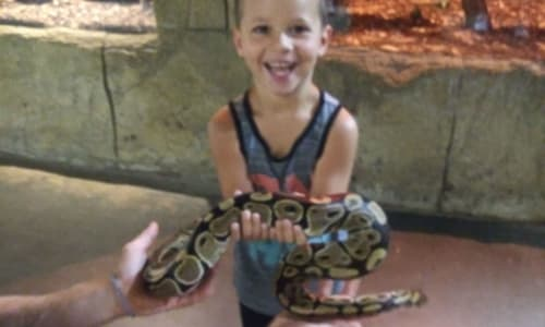 Young Boy with a Snake at RainForest Adventures Discovery Zoo