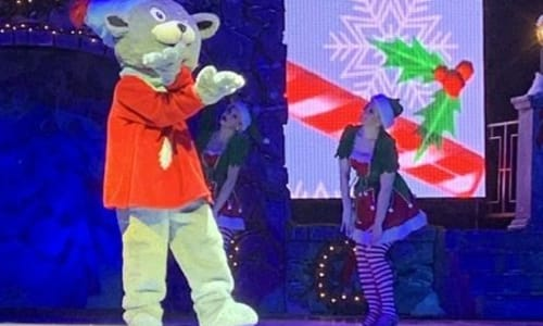 Performance at Christmas on Ice