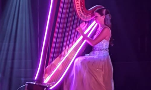 Harp at The Haygoods