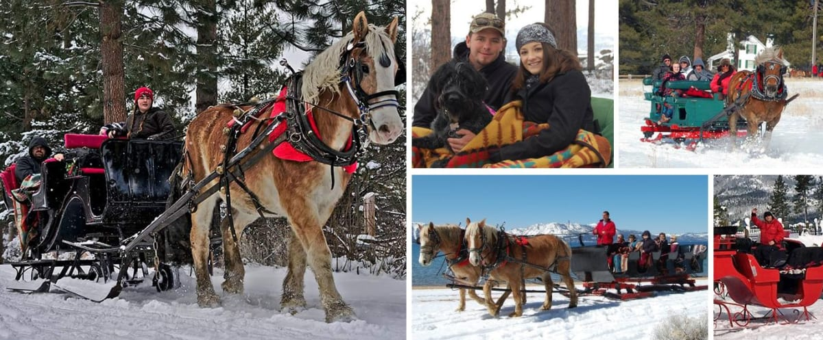 Experience the Sunset Sleigh Ride and Dinner