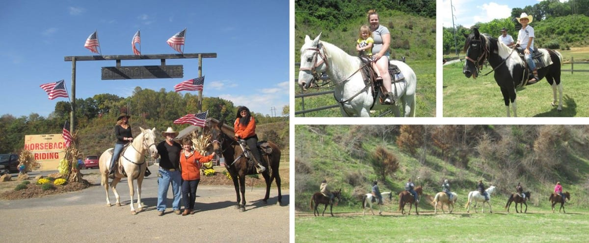 Gold Rush Stables Pigeon Forge Horseback Rides Collage