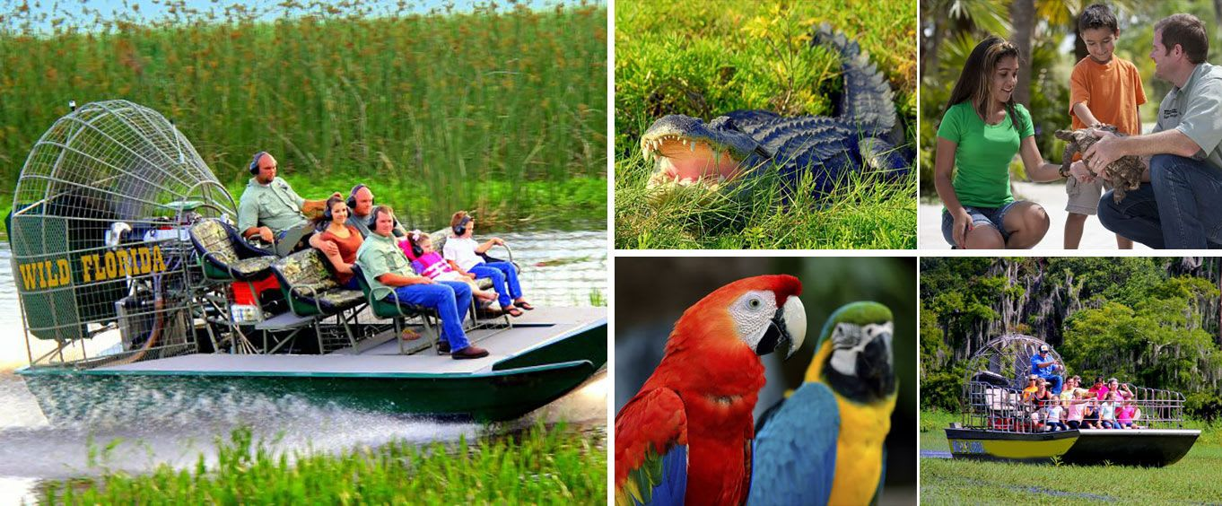 1/2 Day Everglades with Safari Park Admission