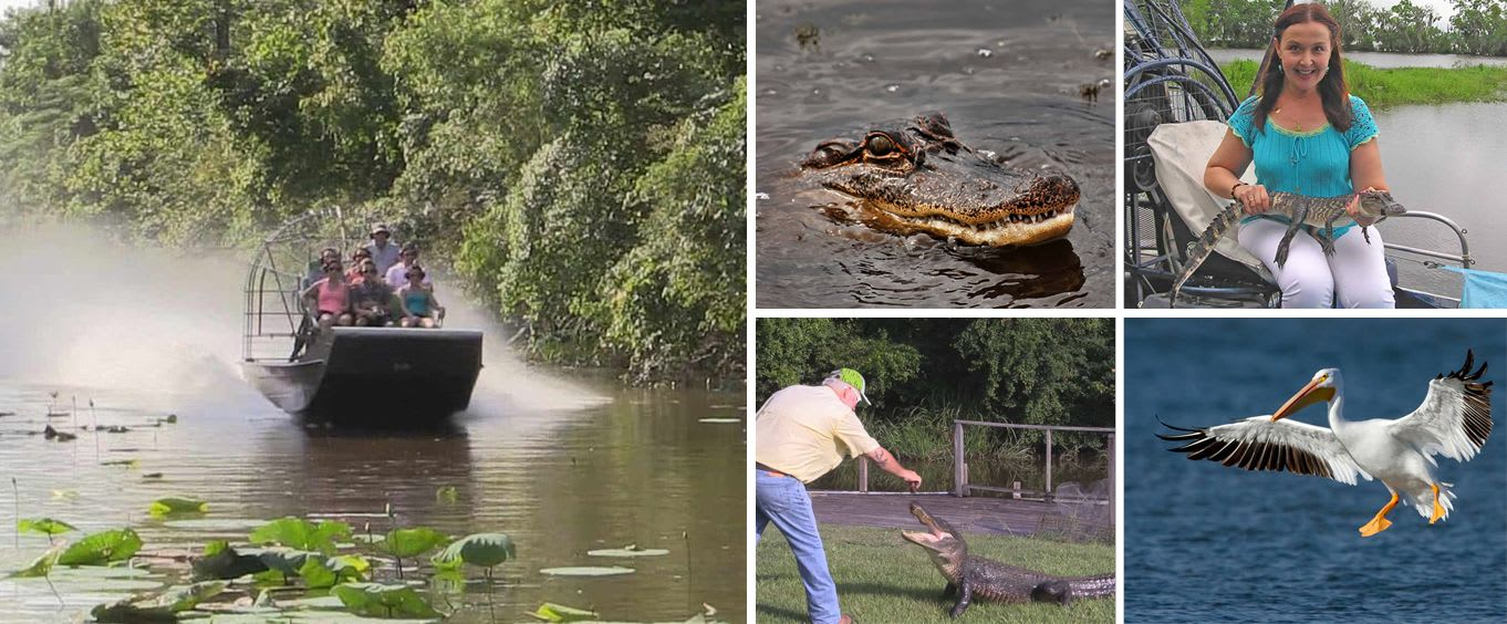 Cajun Bayou Airboat Swamp Tour