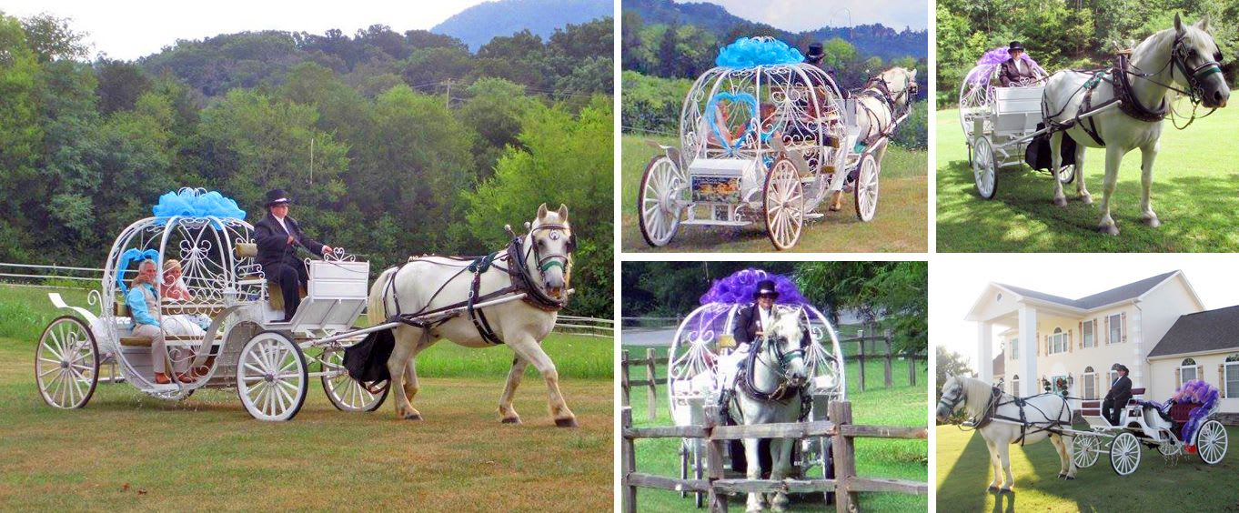 Heritage Carriage Rides Romance Package