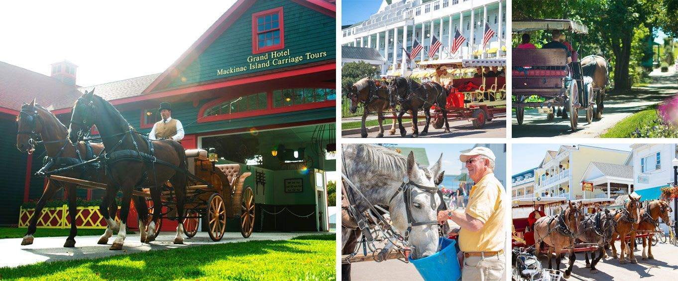 Mackinac Island Carriage Tours