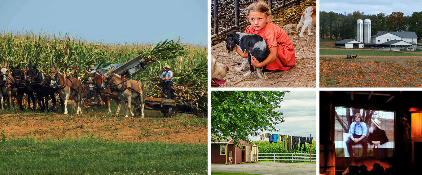 Lancaster Amish Film, House, and Farmland Experience