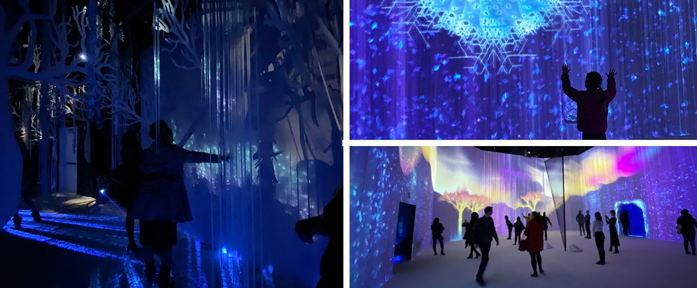 ARTECHOUSE: Immersive Digital/Technology Art Space