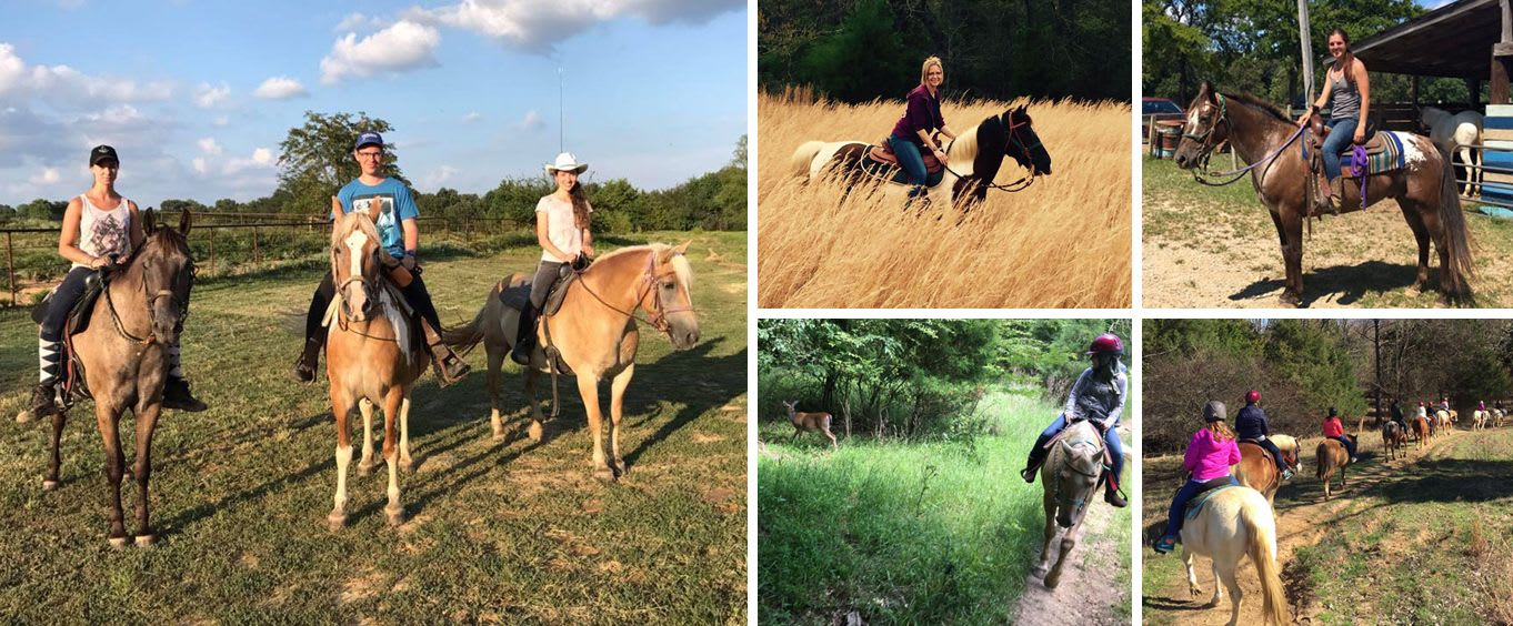 Horseback Trail Rides at Shelby Farms Park